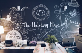 The Hatchery Place
